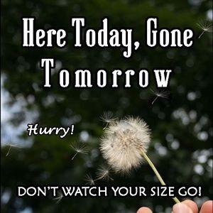 Shoes - Mi size GO so fast! Don't Wait!!!!